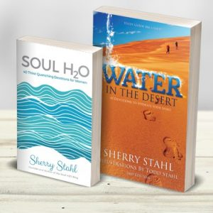 Soul H2O & Water In The Desert - Sherry's Books