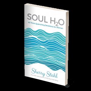 Soul H2O Mockup